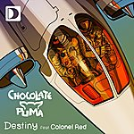 Chocolate Puma Destiny (Feat. Colonel Red)