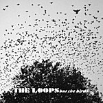Loops But The Birds