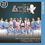Los Ángeles Azules Íconos 25 Éxitos