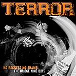 Terror No Regrets, No Shame: The Bridge Nine Days