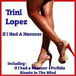 Trini Lopez If I Had A Hammer