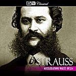 Alfred Scholz Strauss: Accelerations Waltz Op. 234 (Single)