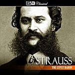 Carl Michalski Strauss: The Gypsy Baron