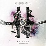 Assemblage 23 Bruise (Deluxe)