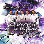 Angel Del Amor Para Siempre