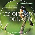 Philippe Bestion Nature Atmosphères : Les Oiseaux De L'aube (Musique Et Sons Naturels)