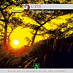 Philippe Bestion Oxygène 2 : L'été, Musique Et Chaleur (Magie De La Musique Et Du Son Naturel)