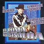 El Puma De Sinaloa El Puma De Sinaloa