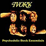 Ivory Psychedelic Rock Essentials