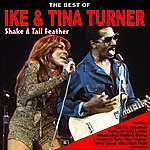 Ike Shake A Tail Feather: The Best Of Ike And Tina Turner