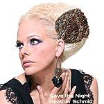 Heather Schmid Save The Night - Single