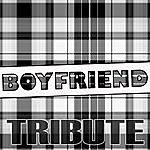 The Dream Team Boyfriend (Justin Bieber Tribute)