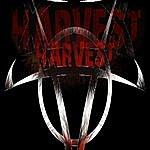 Harvest Evolution