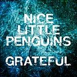 Nice Little Penguins Grateful