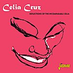 Celia Cruz Reflections Of The Incomparable Celia