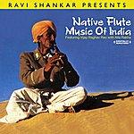 Vijay Raghav Rao Ravi Shankar Presents Native Flute Music Of India (Digitally Remastered)