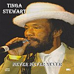 Tinga Stewart Never Never Never - Single