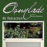 Osunlade My Reflection