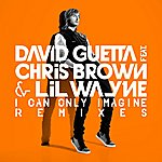 David Guetta I Can Only Imagine Remixes (Feat.Chris Brown And Lil Wayne)