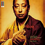 Lama Gyurme Rain Of Blessings - Vajra Chants (Real World Gold)