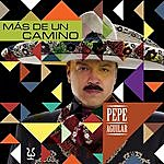 Pepe Aguilar Mas De Un Camino