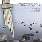 Michel Bestrin Instrumental Moods Of The Panpipes