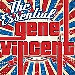 Gene Vincent The Essential