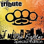 The Dream Team The Fighter (Gym Class Heroes Feat. Ryan Tedder Special Edition Tribute)