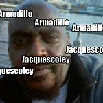 Jacquescoley Armadillo