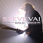 Steve Vai Where The Wild Things Are (Live In Minneapolis)
