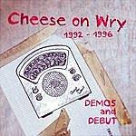 Bernie Bernie Headflap Cheese On Wry: 1992 - 1996 Demos And Debut