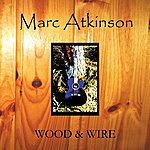 The Marc Atkinson Trio Wood & Wire