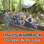 Travis Wammack Country In My Soul