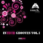 Varios Intech Grooves Vol.1