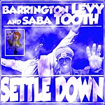Barrington Levy Settle Down - Single