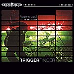 Trigger Finger Faders Up 2 - Live In Amsterdam