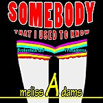 Melissa Adams Somebody That I Used To Know (Brokenhearted Primadonna)