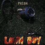 Phish Lawn Boy