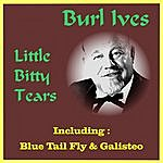 Burl Ives Little Bitty Tears