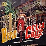 Celia Cruz Bravo