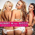 Robert M. Dance Hall Track(Josh Mosh Remix)