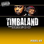 Timbaland & Magoo Feel It