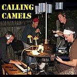 Blinded Camels Calling Camels
