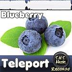 Teleport Blueberry