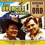 Los Broncos De Reynosa Repertorio De Oro