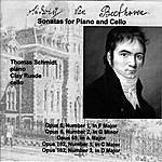 Thomas Schmidt Beethoven Sonatas For Piano And Cello