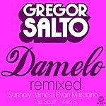Gregor Salto Damelo Remixed