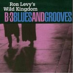 Ron Levy B-3 Blues And Grooves