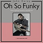 John Carey Oh So Funky (Feat. Anton Fig, Andy Narell, Oz Noy & Will Lee)