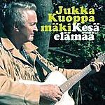 Jukka Kuoppamäki Kesäelämää